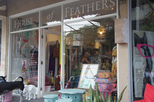 House of FEATHERS 1
