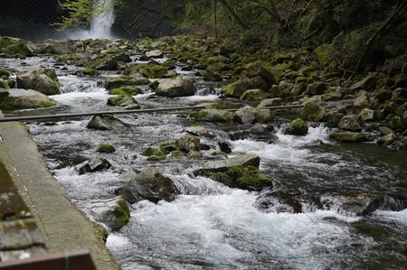 浄蓮の滝4