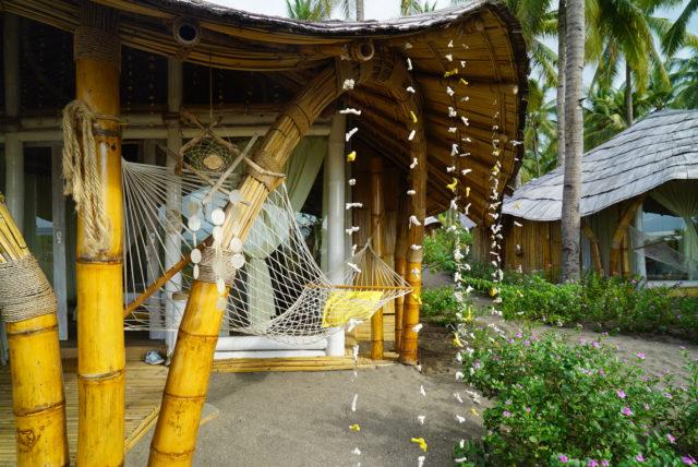 Coconut Garden in Maumere 01