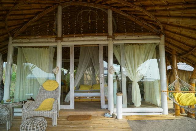 Coconut Garden in Maumere 02