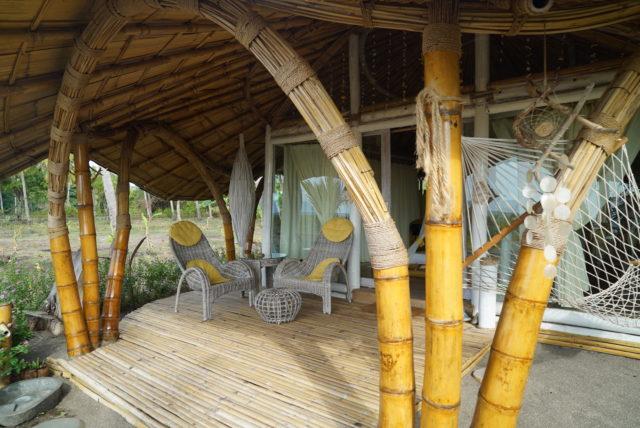 Coconut Garden in Maumere 03