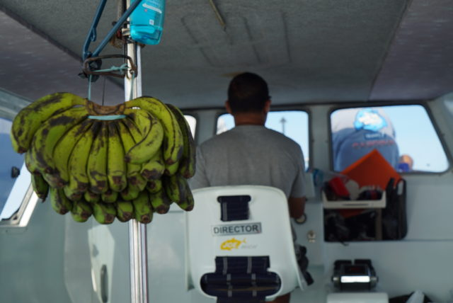 KOMODO island hopping 04