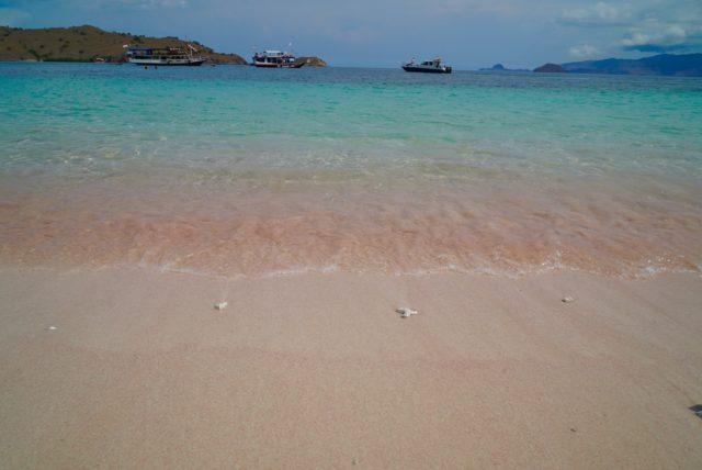 PINK BEACH 03