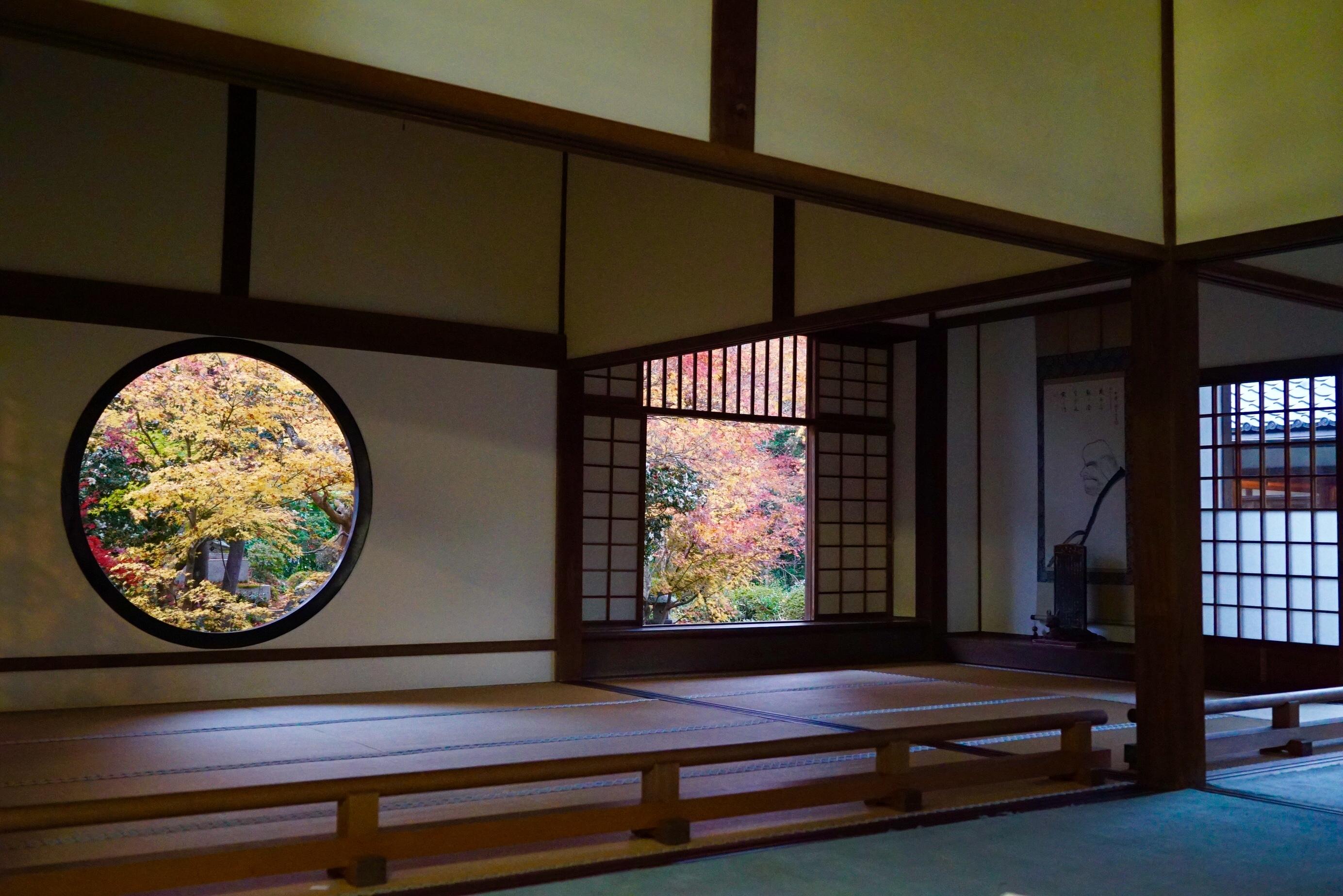 【11月の京都】紅葉1DAYプラン